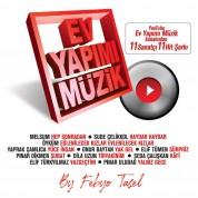 Çeşitli Sanatçılar, Febyo Taşel: Febyo Taşel - Ev yapımı Müzik - CD