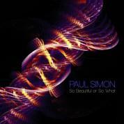 Paul Simon: So Beautiful Or So What - Plak