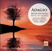 Çeşitli Sanatçılar: Adagio - Music of Silence - CD