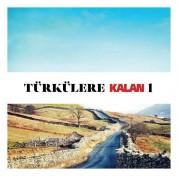 Çeşitli Sanatçılar: Türkülere Kalan 1 - CD
