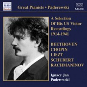 Ignacy Jan Paderewski: Paderewski: Victor Recordings (Selections) (1914-1941) - CD