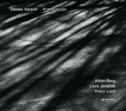 Denes Varjon: Precipitando - CD