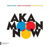 Aka Moon: Now - CD