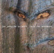 Steve Swallow: Into the woodwork - CD