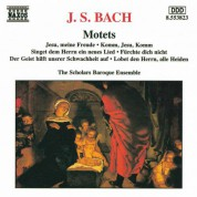 Scholars Baroque Ensemble: Bach: Motets, BWV 225-230 - CD