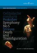 Prokofiev: Celibidache conducts Prokofiev Symphony No. 5 & Strauss Death and Transfiguration - DVD