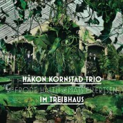 Håkon Kornstad: Im Treibhaus - Plak