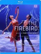 Kirov Orchestra, Valery Gergiev: Stravinsky: The Firebird - BluRay