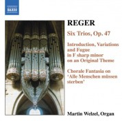 Martin Welzel: Reger, M.: Organ Works, Vol.  6 - CD