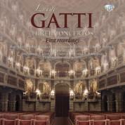 Orchestra dei Ducati, Fausto Pedretti, Orchestra del Conservatorio di Mantova, Luca Bertazzi: Gatti: Three Concertos - CD