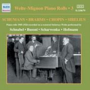 Welte-Mignon Piano Rolls, Vol. 3 (1905-1926) - CD