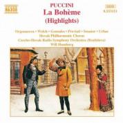 Carmen Gonzales, Will Humburg, Luba Orgonasova, Fabio Previati, Jonathan Welch: Puccini: La Bohème (Highlights) - CD