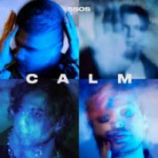 5 Seconds Of Summer: Calm (Dleuxe) - CD
