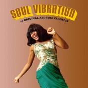 Çeşitli Sanatçılar: Soul Vibration (25 Original All-Time Classics in a Deluxe Gatefold Set) - Plak