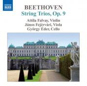 Attila Falvay: Beethoven: Complete String Trios, Vol. 2 - CD
