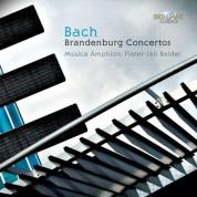 Musica Amphion, Pieter-Jan Belder, Wilbert Hazelzet, Daniel Brüggen: J.S. Bach: Brandenburg Concertos - CD