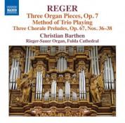 Christian Barthen: Reger: Organ Works, Vol. 16 - CD