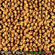 Çeşitli Sanatçılar: Leblebi Pop Folk - CD