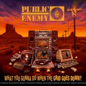 Public Enemy: What You Gonna Do When The Grid Goes Down? - Plak
