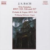 Wolfgang Rübsam: J.S. Bach: Trio Sonatas, BWV 525-527, Prelude And Fugue - CD
