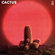Cactus - Plak