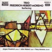 Trio Friedrich-Hebert-Moreno: Surfacing - CD