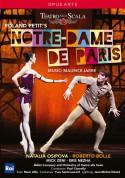 Jarre: Notre-Dame de Paris - DVD