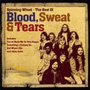 Blood, Sweat & Tears: The Best Of - CD