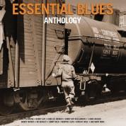 Çeşitli Sanatçılar: Essential Blues Anthology - Plak