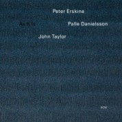Peter Erskine Trio: As It Is - CD