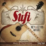 Çeşitli Sanatçılar: Ney Ve Gitar - CD
