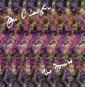 John McLaughlin: The Promise - CD