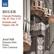 Josef Still: Reger: Organ Works, Vol. 14 - CD