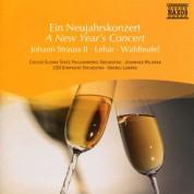 Çeşitli Sanatçılar: A New Year's Concert - CD