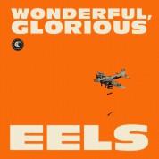 Eels: Wonderful, Glorious - CD