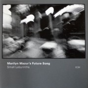 Marilyn Mazur: Small Labyrinths - CD