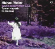 Michael Wollny: Collector's Edition: Wunderkammer XXL - CD