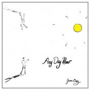 Joan Baez: Any Day Now - Plak