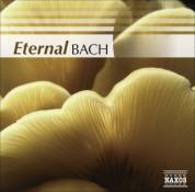 Çeşitli Sanatçılar: Bach (Eternal) - CD