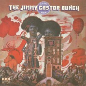 Jimmy Castor Bunch: It's Just Begun - Plak