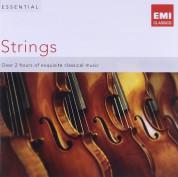 Çeşitli Sanatçılar: Essential Strings - CD