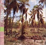 Çeşitli Sanatçılar: Seychelles: Forgotten Music of the Islands - CD
