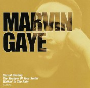 Marvin Gaye: Collections - CD
