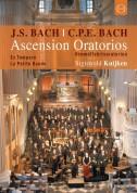La Petite Bande, Sigiswald Kuijken: J.S. Bach & C.P.E. Bach: Ascension Oratorios - DVD