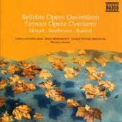 Çeşitli Sanatçılar: Famous Opera Overtures - CD