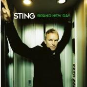 Sting: Brand New Day - Plak