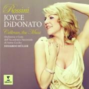 Joyce DiDonato, Orchestra dell'Accademia Nazionale di Santa Cecilia, Eduardo Müller: Joyce DiDonato - Colbran, the MuseColbran, The Muse (Rossini) - CD