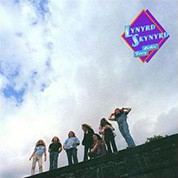 Lynyrd Skynyrd: Nuthin' Fancy (200g-edition) - Plak