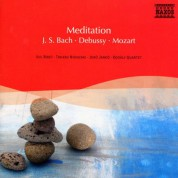 Çeşitli Sanatçılar: Meditation - CD