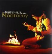 Jimi Hendrix: Live At Monterey - Plak